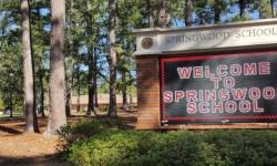 SPRINGWOOD INTERNATIONAL SCHOOL